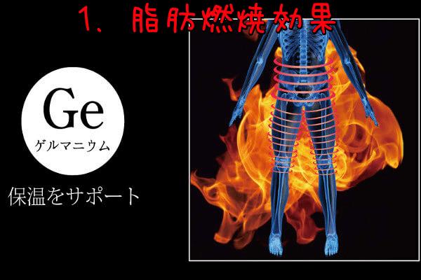 ゲルマニウムによる脂肪燃焼効果