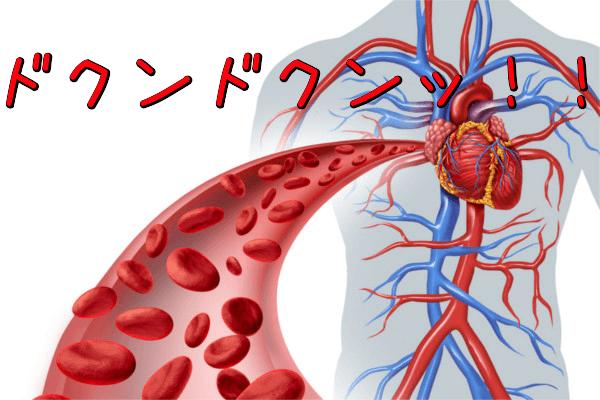 ビレッグ(Bileg)の効果その3:血行促進効果
