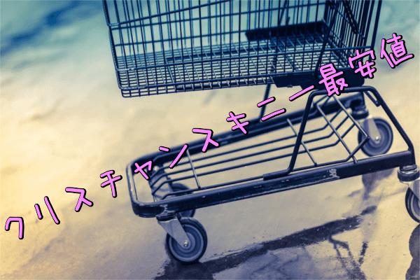クリスチャンスキニーの値段調査!通販最安値(Amazon・楽天・公式サイト)