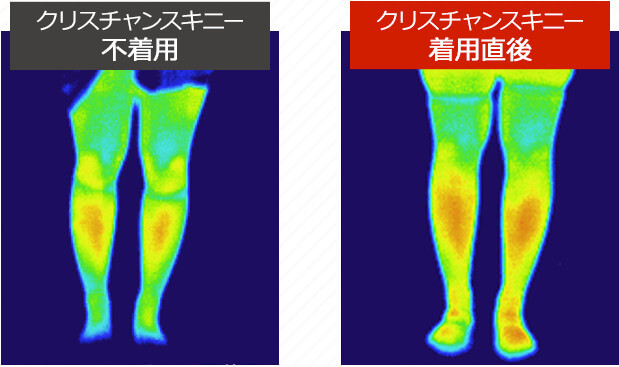 4.脂肪燃焼効果