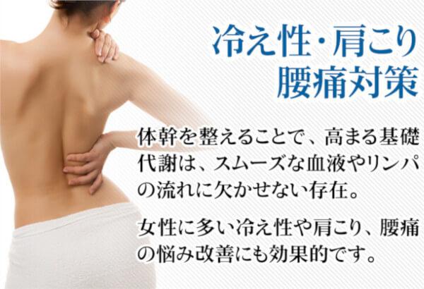 クリスチャントルソーの効果6:冷え性、肩こり、腰痛対策